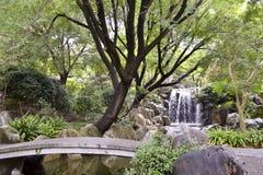 Teich und Wasserfall, chinesischer Garten der Freundschaft, Darling Harbour, Sydney, New South Wales, Australien Lizenzfreie Stockfotografie
