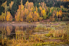Teich während des Herbstes Lizenzfreie Stockbilder