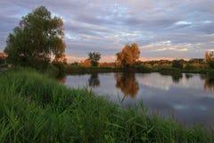 Teichlandschaft Stockbild