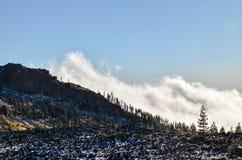 Teide国家公园 免版税库存图片