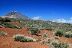 Teide在特内里费岛 图库摄影