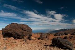 Teide ägg Royaltyfria Foton