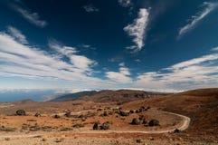 Teide ägg Fotografering för Bildbyråer