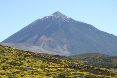 Teide Royalty Free Stock Image