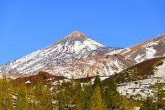 Teide berg Royaltyfri Bild