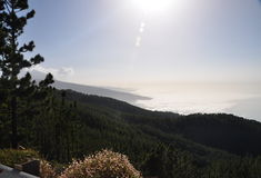 Teide d'EL, parc Photographie stock