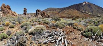 Teide e panorama di Los Roques con la priorità alta a terra Immagini Stock Libere da Diritti