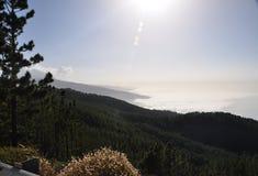 Teide El, парк Стоковая Фотография