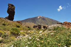 Teide el roque 2 Royalty Free Stock Images