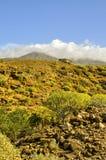 Teide i moln Royaltyfri Foto