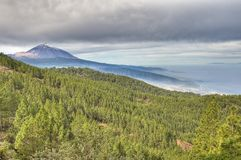 Teide Mount from Chipeque Royalty Free Stock Photography