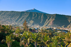 Teide Mountain Peak from Puerto de la Cruz Royalty Free Stock Photo