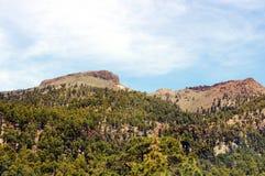 Teide nationaal park van Gr (Tenerife) Stock Foto's