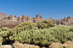 Teide national park Stock Image