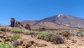 Teide National Park (Canadas del Teide) Royalty Free Stock Photo