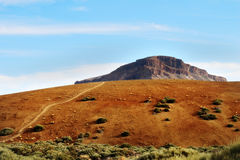 Teide National Park, Tenerife. Stock Images