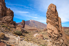Teide National Park. Tenerife. Canary Islands Stock Photo