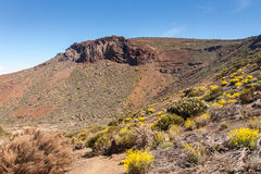 Teide National Park Stock Photos