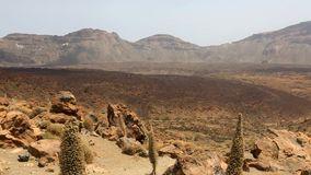 Teide National Park in Tenerife at Canary Islands stock footage