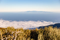 Teide National Park, Tenerife, Canary Islands, Spain Royalty Free Stock Image