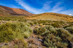 Teide National Park-Tenerife,Canary Islands,Spain Royalty Free Stock Photos