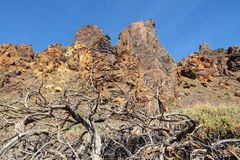 Teide National Park, Tenerife Royalty Free Stock Image