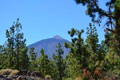 Teide National Park. Tenerife, Canary Islands, Spain Stock Image