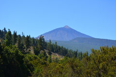 Teide National Park. Tenerife, Canary Islands, Spain royalty free stock images