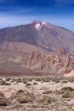 Teide National Park Tenerife Canary Islands vertical Stock Photos