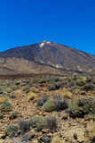 Teide National Park in Tenerife Royalty Free Stock Photo