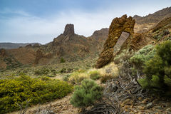 Teide National Park on Tenerife island in Spain Stock Photos