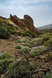 Teide National Park on Tenerife island in Spain Royalty Free Stock Images