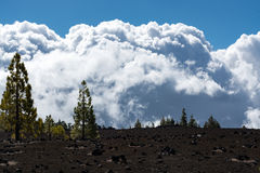 Teide National Park, Tenerife - the most spectacular travel dest Royalty Free Stock Images