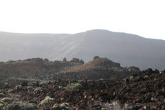 Teide nationalpark Arkivbild
