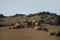 Teide nationalpark Arkivfoto