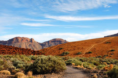 Teide Nationalpark, Tenerife, Kanarische Inseln Stockbild