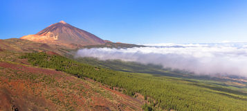 Teide and Orotava Valley Stock Images