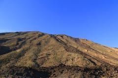 Teide Park Narodowy Obraz Stock