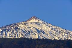 Teide täckte vid snö Royaltyfria Foton