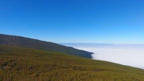 teide tenerife национального парка сток-видео