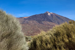 Teide Stock Photo