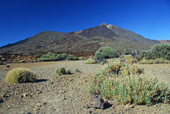 Teide Volcano. Landscape showing the Teide Volcano fin Tenerife from its caldera Royalty Free Stock Photos
