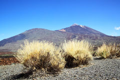 Teide volcano Royalty Free Stock Photography