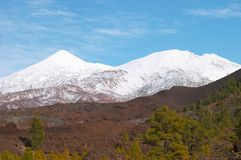 Teide volcano. In snow Royalty Free Stock Photo