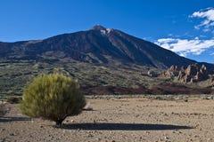 Teide - volcano landscape Stock Images