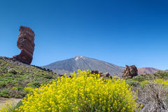 Teide volcano peak Stock Images