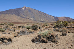 Teide volcano plain 2 Royalty Free Stock Images