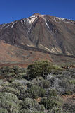 Teide volcano summit Royalty Free Stock Photo