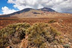 Teide Volcano in Tenerife island. Beautiful desert landscape in Tenerife island with the Teide volcano Stock Photos