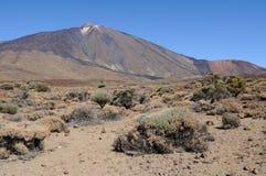 Teide Vulkanebene 2 Lizenzfreie Stockbilder